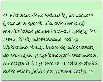 szopanotka1.png